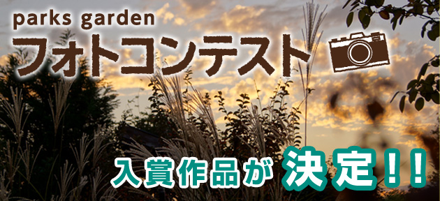 /var/rev0/0003/7394/photocontest_02.jpg